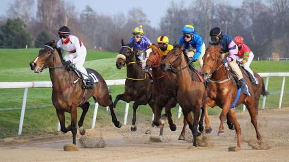 Scommesse cavalli Betflag: info, come funziona e bonus